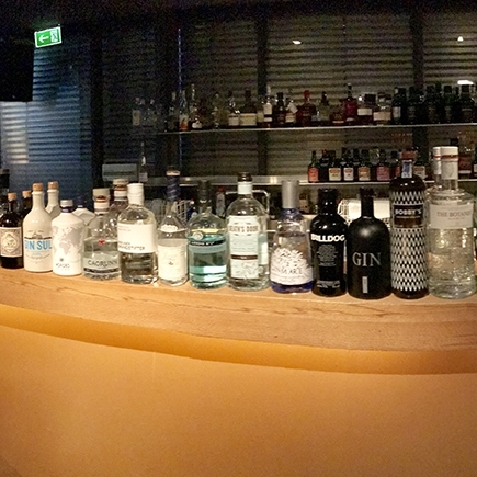 The Gin Tonic Experience/ Gin Tasting in der BIX Lounge